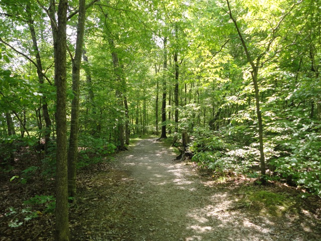 trail01